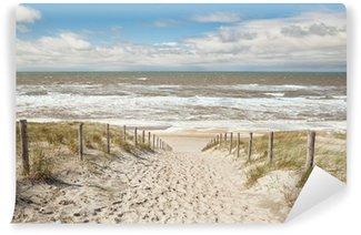 Vinylová Fototapeta Písek cesta na mořské pláži v slunečný den