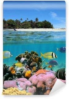 Vinylová Fototapeta Pláž a korálový útes