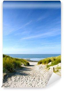 Vinylová Fototapeta Pláž a písečné duny