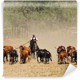 Vinylová Fototapeta Plemenných býků