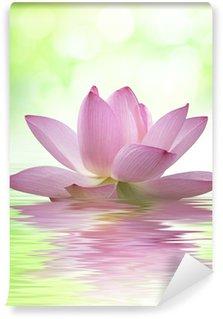 Vinylová Fototapeta Plný lotosový květ