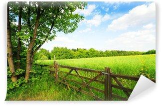 Vinylová Fototapeta Plot v zeleném poli pod modrou oblohou