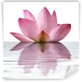 Vinylová Fototapeta Plovoucí Lotus