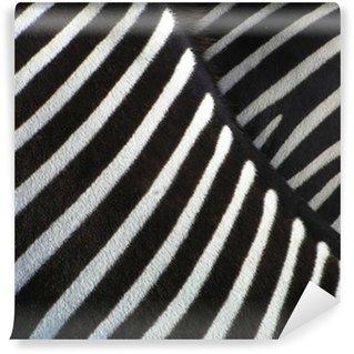 Vinylová Fototapeta Podrobnosti o zebra