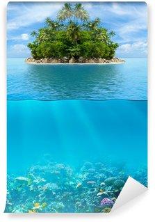 Vinylová Fototapeta Podvodní korálový útes mořského dna a povrchové vody s tropickým ISL