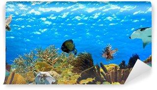 Vinylová Fototapeta Podvodní panorama tropické útesu v Karibiku