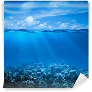 Fototapeta Vinylowa Podwodne rafy koralowej dna widok z powierzchni horyzontu i wody