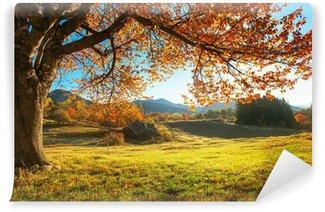 Vinylová Fototapeta Podzimní krajina