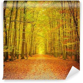 Vinylová Fototapeta Podzimní park