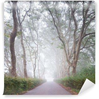 Vinylová Fototapeta Podzimní pohled na dráze v rovině alejí v mlze