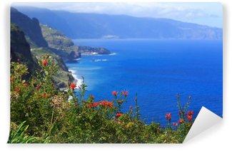 Vinylová Fototapeta Pohled na krásné severního pobřeží ostrova Madeira, Portugalsko