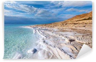 Vinylová Fototapeta Pohled na pobřeží Mrtvého moře