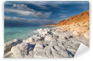 Vinylová Fototapeta Pohled z Mrtvého moře pobřeží v době západu slunce