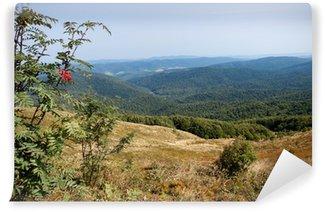 Vinylová Fototapeta Pohoří Bieszczady v jihovýchodním Polsku