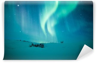 Vinylová Fototapeta Polární záře (Aurora Borealis) nad sněhem