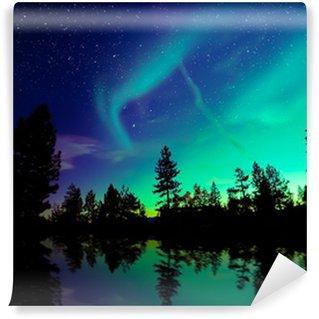 Vinylová Fototapeta Polární záře (Aurora borealis)