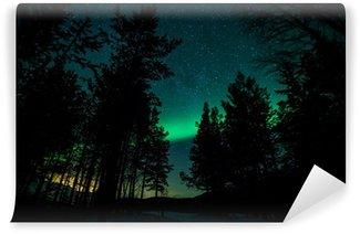 Vinylová Fototapeta Polární záře nad stromy ve Švédsku