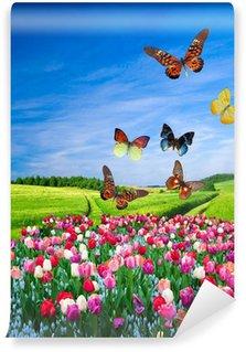 Vinylová Fototapeta Pole barevných květin a skupina motýl