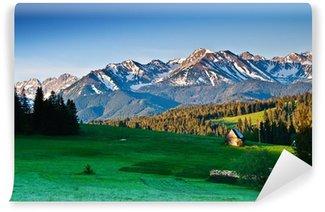 Vinylová Fototapeta Polský Tatra hory panorama v dopoledních hodinách