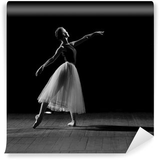 Vinylová Fototapeta Portrét mladé hezké balerína
