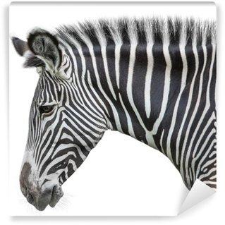 Fototapeta Winylowa Portret zebra