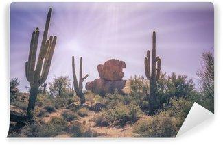 Vinylová Fototapeta Pouštní balvany saguaro kaktus strom krajiny