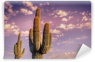Vinylová Fototapeta Pouštní krajina saguaro kaktus Arizona USA