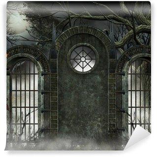 Vinylová Fototapeta Pozadí Gotico - Cancello con Nebbia