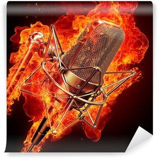 Vinylová Fototapeta Profesionální studiový mikrofon a požární