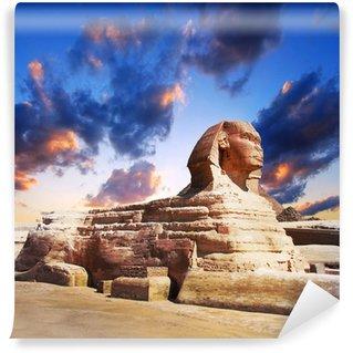 Vinylová Fototapeta Profil Velké sfingy, Giza egypt
