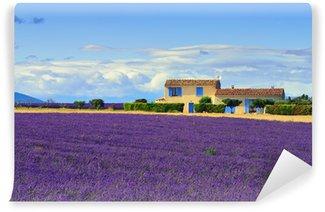 Vinylová Fototapeta Provence venkovské krajiny