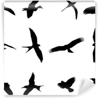 Vinylová Fototapeta Ptáci silueta kolekce - vektor