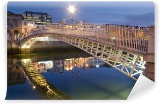 Vinylová Fototapeta Půlpence Most - Dublin - Irlande