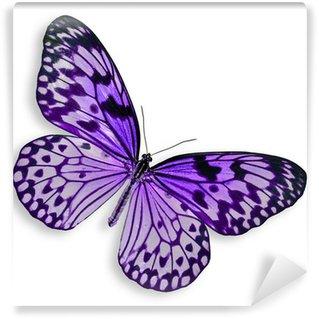 Fototapeta Vinylowa Purpurowy motyl latający