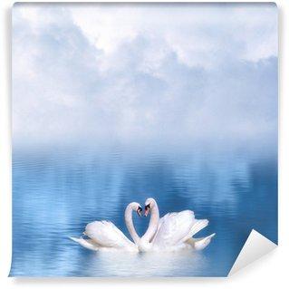 Vinylová Fototapeta Půvabné labutě v lásce
