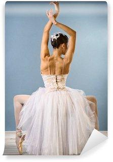 Vinylová Fototapeta Půvabné tanečnice zadní pohled
