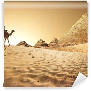 Vinylová Fototapeta Pyramidy v poušti