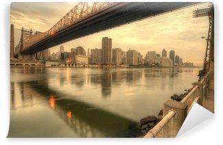 Vinylová Fototapeta Queensboro Bridge