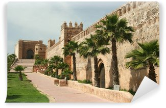 Vinylová Fototapeta Rabat stěny