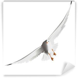 Vinylová Fototapeta Racek létání v oblacích s křídly