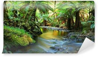 Vinylová Fototapeta Rainforest řeka panorama