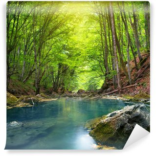 Vinylová Fototapeta Řeka v horském lese.