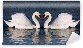 Vinylová Fototapeta Retro fotografie labutí srdce symbol věčné lásky