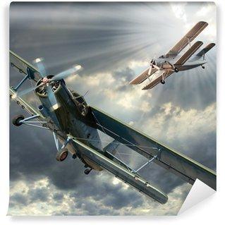 Fototapeta Winylowa Retro styl obraz z biplanes. Temat transportu.
