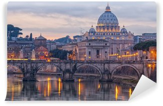 Vinylová Fototapeta Řím Saint Peters Basilica 01
