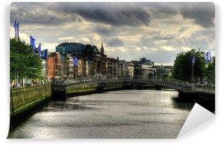 Vinylová Fototapeta River Liffey v Dublinu, Irsko