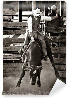 Vinylová Fototapeta Rodeo býk kovboj na koni - převeden s přídavkem obilí