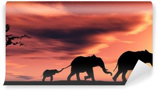 Vinylová Fototapeta Rodina slonů