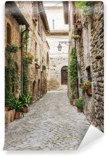 Fototapeta Winylowa Romantyczna uliczka Włoski