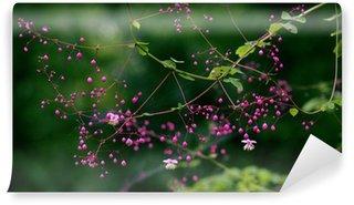 Fototapeta Winylowa Rośliny
